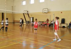 Półfinał Wojewódzki w Mini-Piłkę Siatkową Dziewcząt